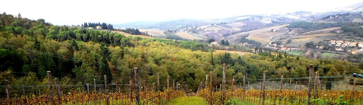 Our Next Tuscan Trip is Planned and You can Join In!